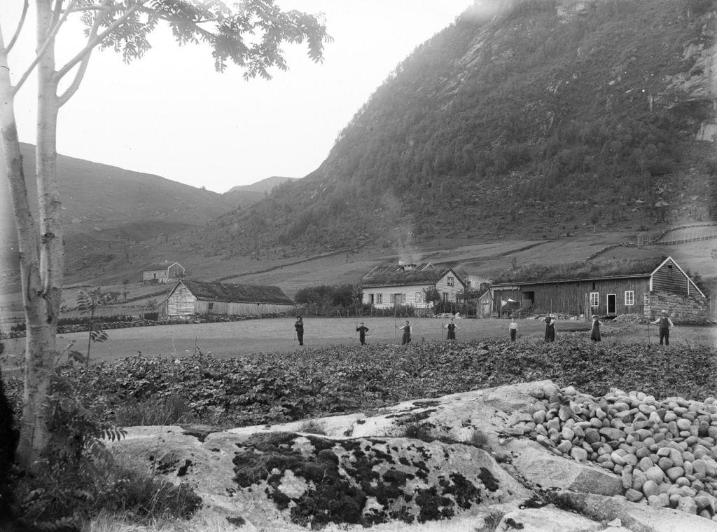 Ferma din Norvegia de la începutul anilor 1900