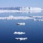 antarktisk2011