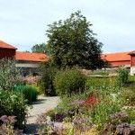 Hedmark-Museum-organic-herb-garden-Norway_740