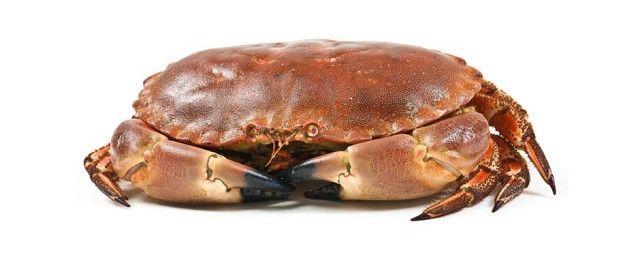 Muncitori pentru sortarea si portionarea crabilor