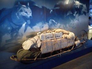 Sanie folosita in expeditiile polare