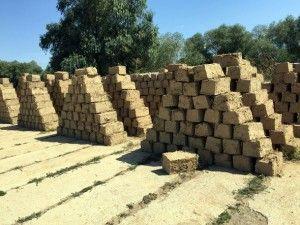 Chirpici de pământ făcuți de deținuți și folosiți pentru construcția caselor